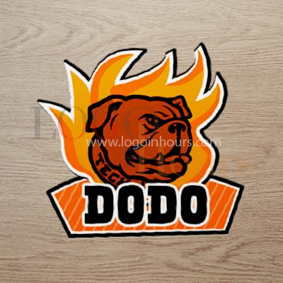 Logo design in hours at a very affordable price all over the world remotley 24/7 graphic service